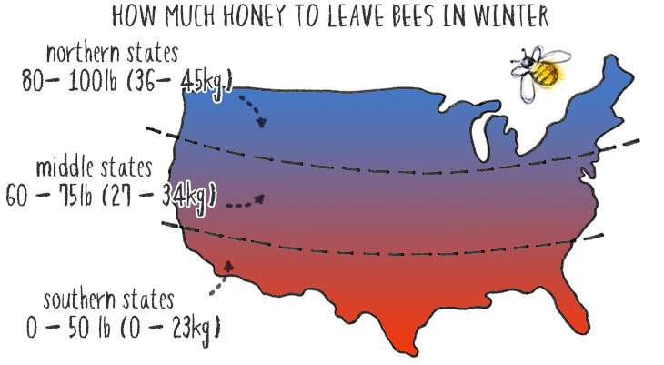 how much honey to leave bees for winter